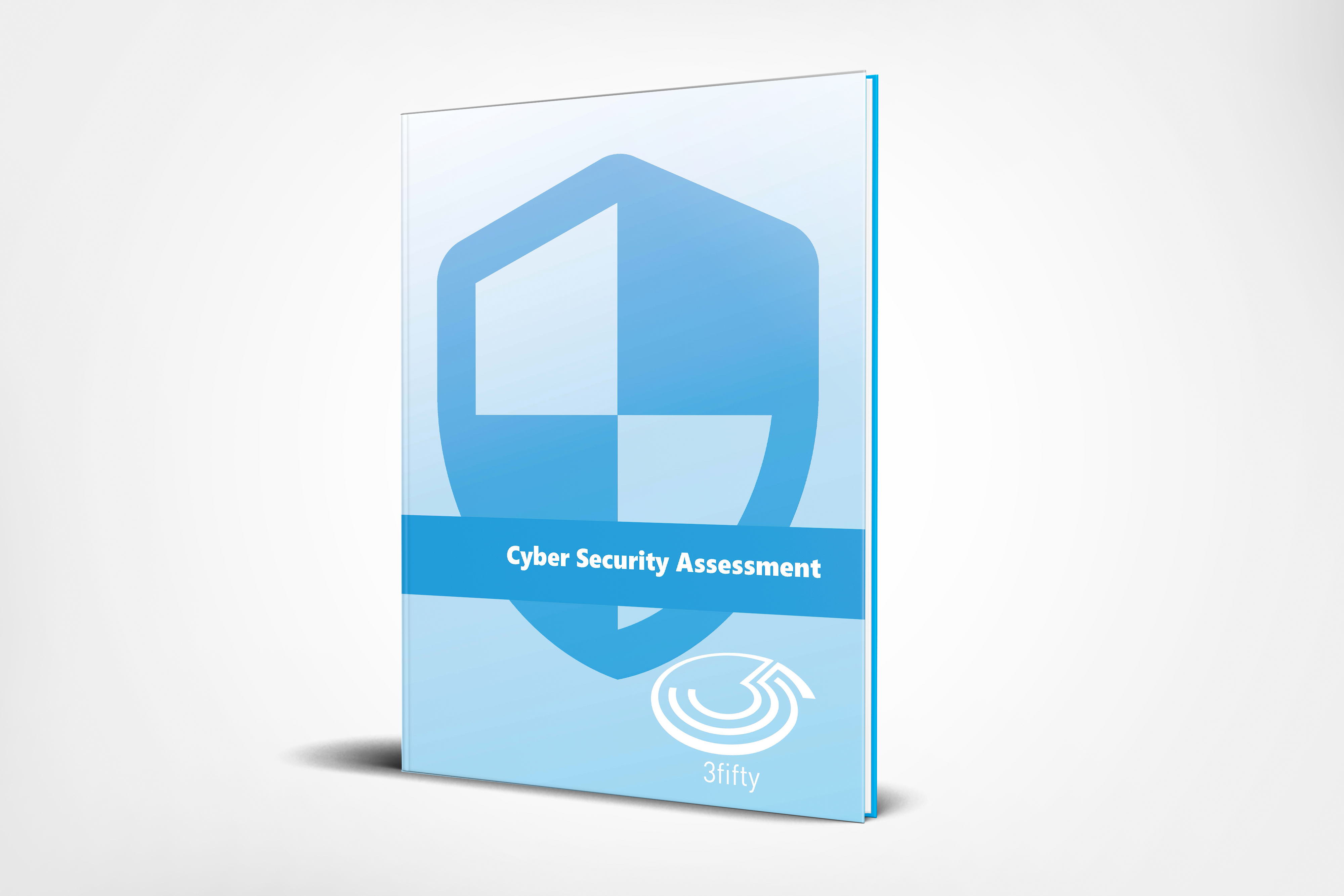 Cyber Security Assessment_backdrop